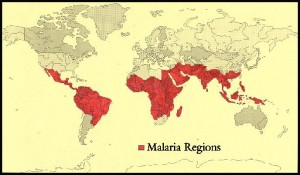 Malaria zones (source: Rpyal Perth Hospital)